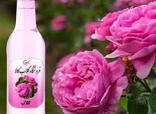 گلاب گل محمدی