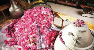 خرید گلاب طبیعی