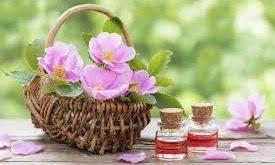 عرضه انواع گلاب زهرا