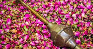 تجارت گلاب