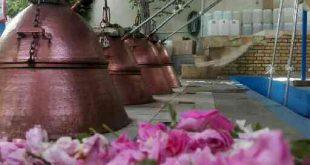 قیمت گلاب اصل